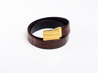 Brown Croco Belt Gold